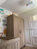 bosdieren plafondlamp baby en kinderkamer