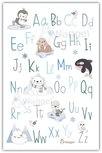 ABC poster Noordpool vriendjes