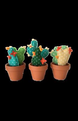 Cactussen set van drie